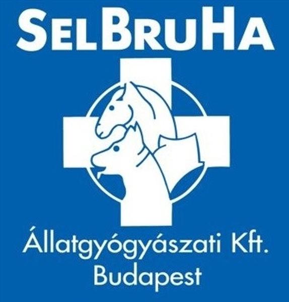 Kép: SelBruHa Vásárlási Utalvány