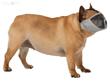 Kép: Trixie Szájkosár Rövid orrú kutyáknak