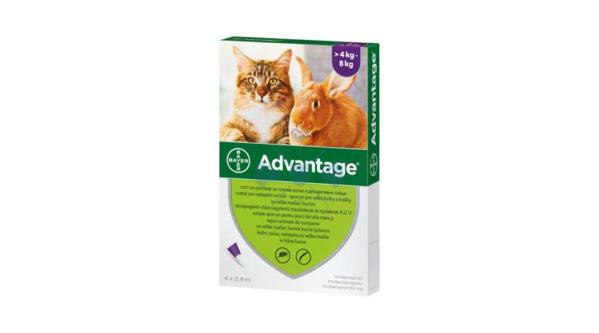 Kép: ADVANTAGE Rácsepegtető Macskáknak, 4 - 8 kg között